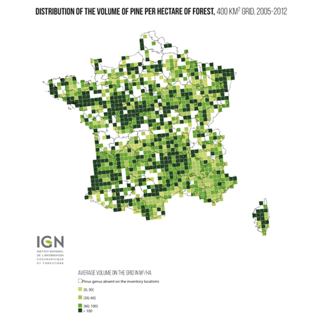 Geographical Coverage Of Pine Trees In France