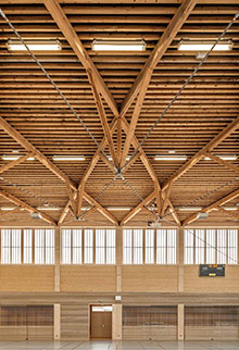 Black pine ceiling rafters with pierced opening